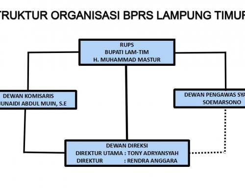 STRUKTUR ORGANISASI BPRS LAMPUNG TIMUR